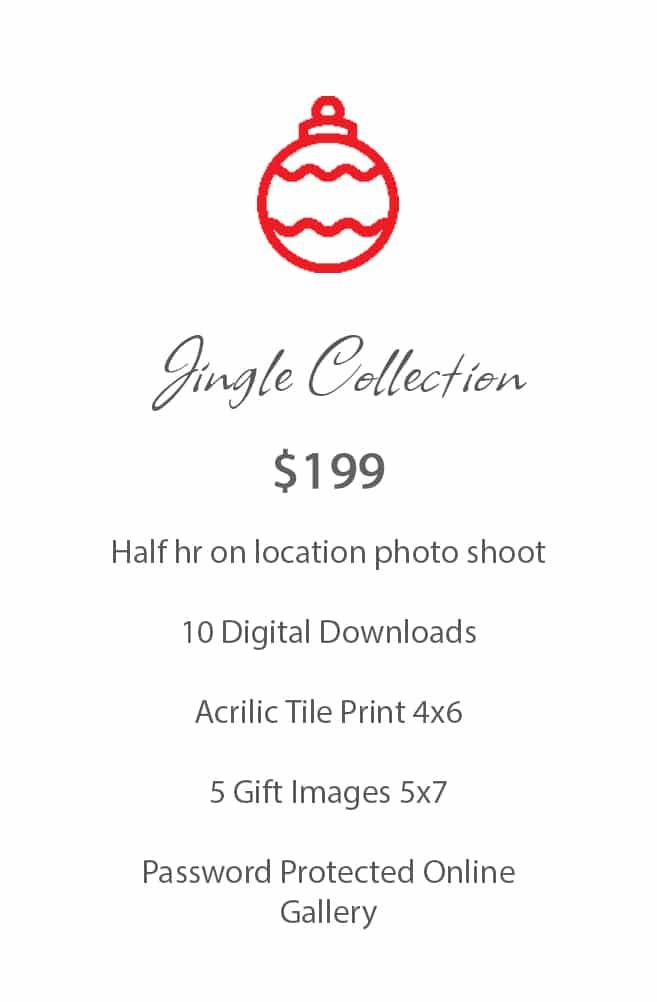 Pricing Christmas Photoshoot