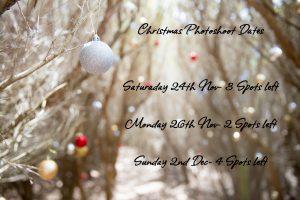 Newcastle Santa Photo Dates available