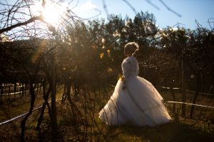 dark Bridal silhouette at Stonehurst Cedar Creek
