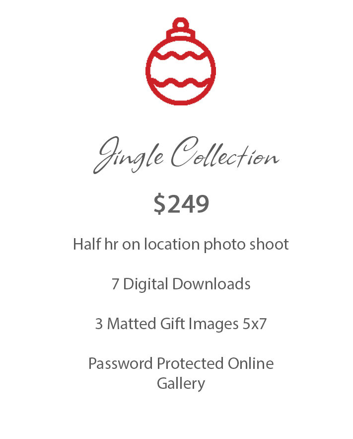 Jingle Collection graphic for Christmas photo package details and price